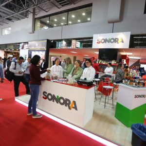 stand sonora-1